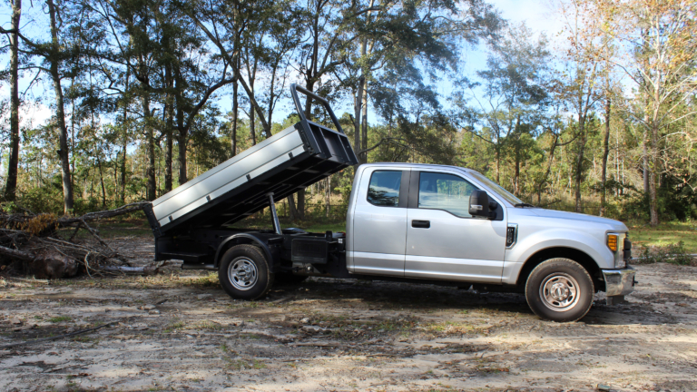 Ford Tipper 2